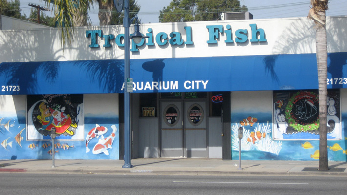 Warner marineecobak reduces nitrate from 160ppm to 5ppm at for Tropical fish shop